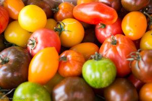 Tomaten gelten als sogenannten Superfood, auch für Haut, Haare und Zähne.