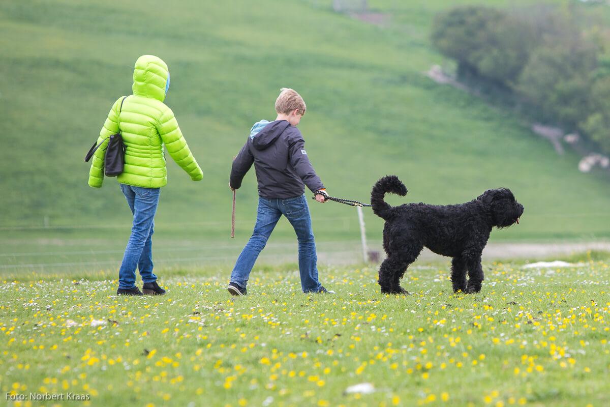 Egal, wie das Wetter ist, wer einen Hund hat, muss raus. Auch eine Art von Motivation!